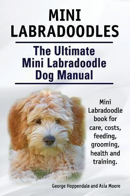 Mini Labradoodles. T...