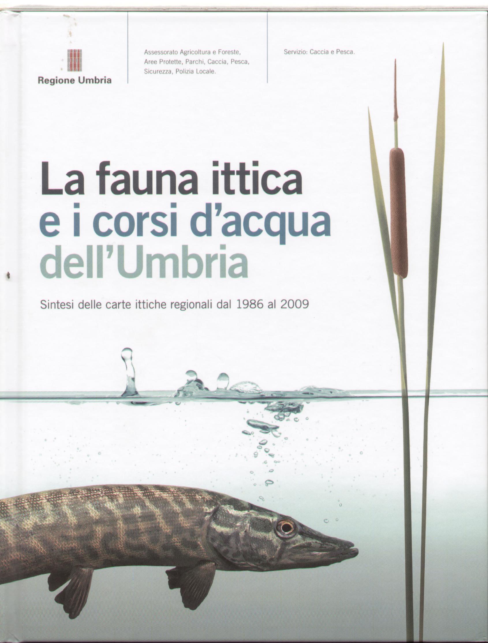 La fauna ittica e i corsi d'acqua dell'Umbria