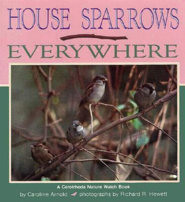 House Sparrows Every...