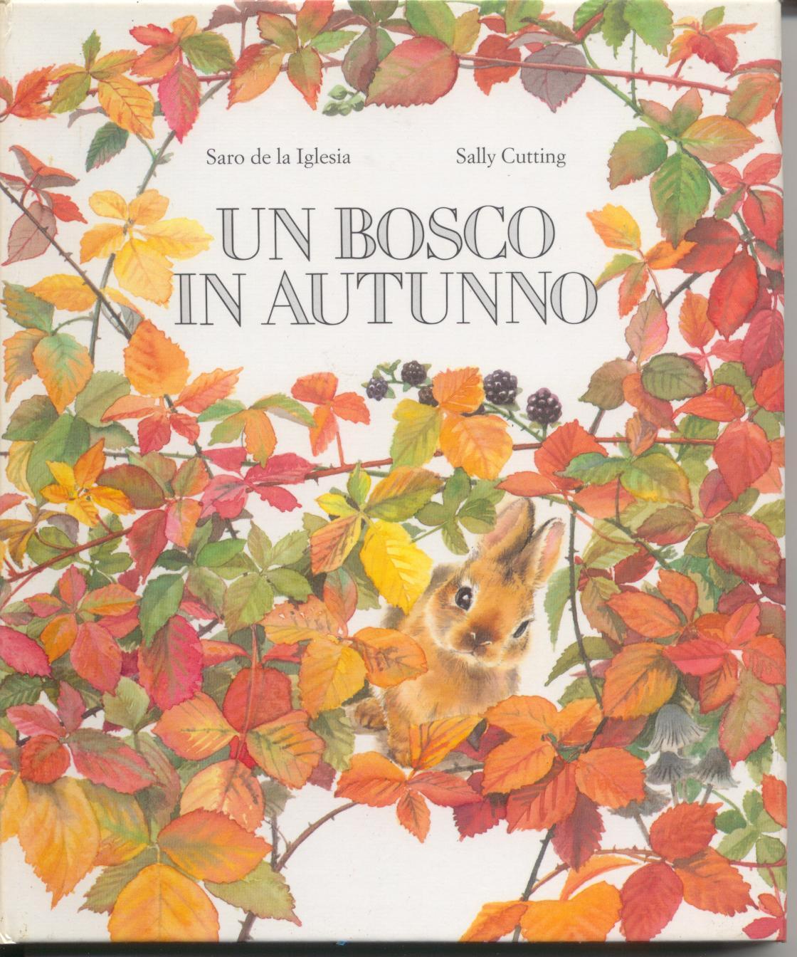 Un bosco in autunno