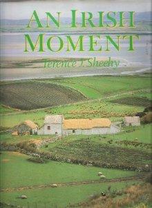 Ireland - an Irish Moment