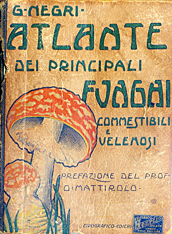 Atlante dei principali funghi commestibili e velenosi
