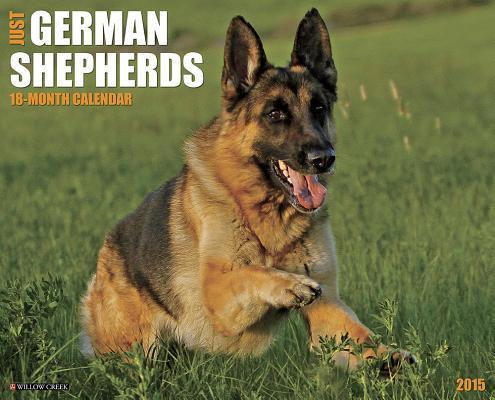 Just German Shepherds 18-Month 2015 Calendar