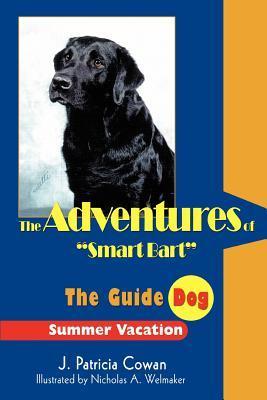 The Adventures of Smart Bart