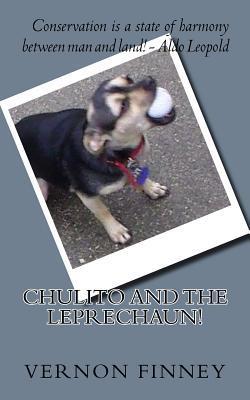 Cholito Descendant of the Techichi!
