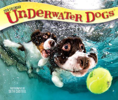 Underwater Dogs 2018...
