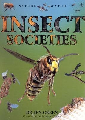 Insect Societies