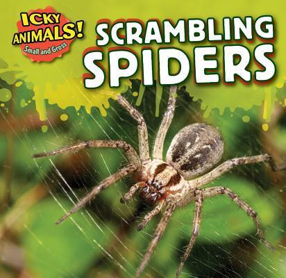 Scrambling Spiders