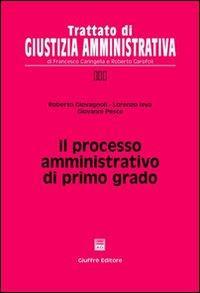 Il processo amministrativo di primo grado