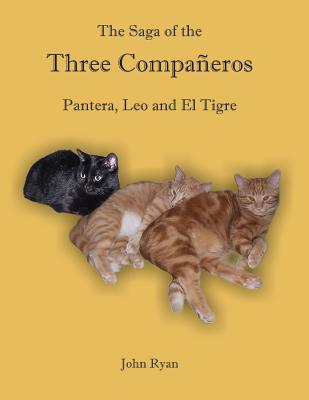 The Saga of the Three Compañeros