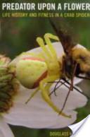 Predator Upon a Flower
