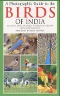 A Photographic Guide to the Birds of India