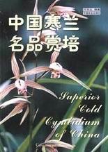 中国寒兰名品赏培