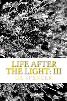 Life After The Light