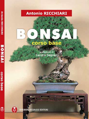 Bonsai: Corso base