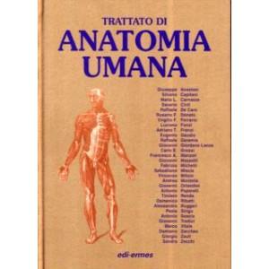 Trattato di anatomia...