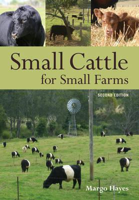 Small Cattle for Small Farms