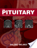 The Pituitary
