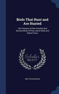 Birds That Hunt and Are Hunted