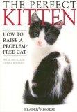 Perfect Kitten