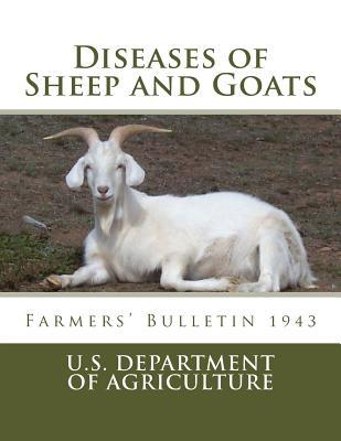 Diseases of Sheep an...