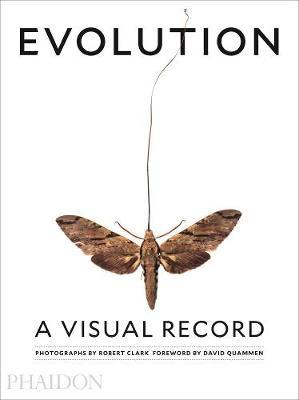 Evolution. A visual record. Ediz. a colori