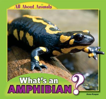 What's an Amphibian?