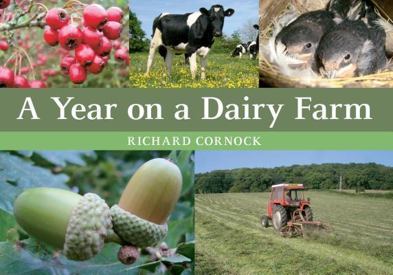 A Year on a Dairy Farm