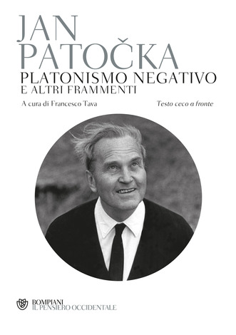 Platonismo negativo
