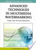 Advanced techniques in multimedia watermarking