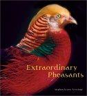 Extraordinary Pheasants