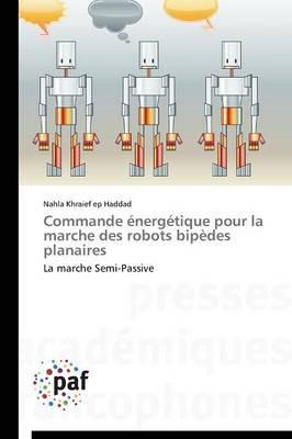 Commande Énergétique pour la Marche des Robots Bipedes Planaires