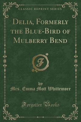 Delia, Formerly the Blue-Bird of Mulberry Bend (Classic Reprint)
