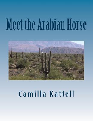 Meet the Arabian Horse