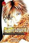 The Wallflower: v. 1