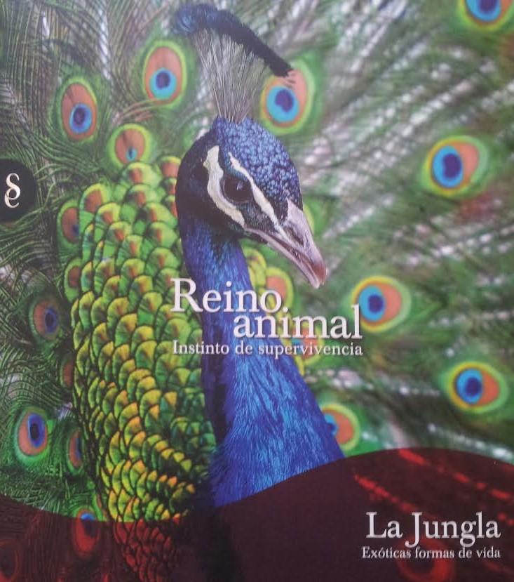 Reino animal: Instinto de supervivencia, 7