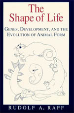 The Shape of Life