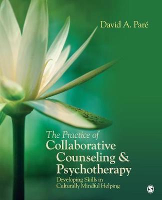 The Practice of Collaborative Counseling & Psychotherapy