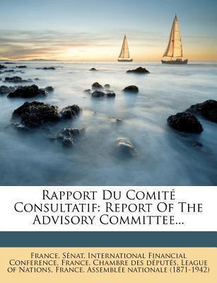 Rapport Du Comite Co...