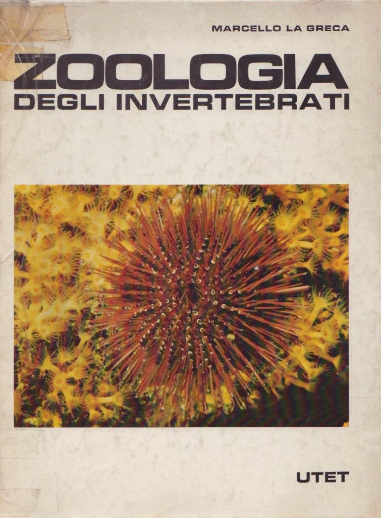 Zoologia / Zoologia degli invertebrati