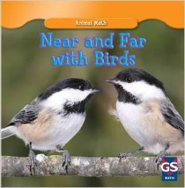 Near and Far with Birds