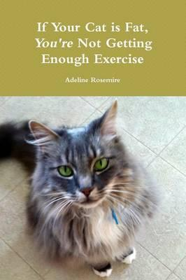 If Your Cat is Fat, You're Not Getting Enough Exercise