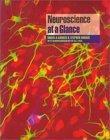 Neuroscience At A Gl...