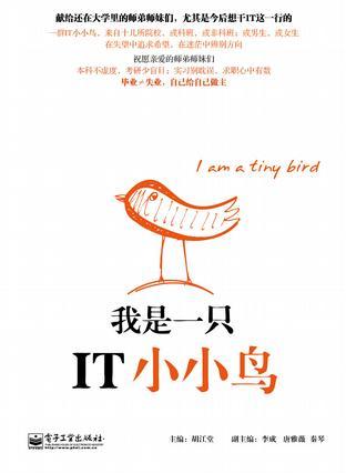 我是一只IT小小鸟