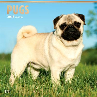 Pugs 2018 Calendar