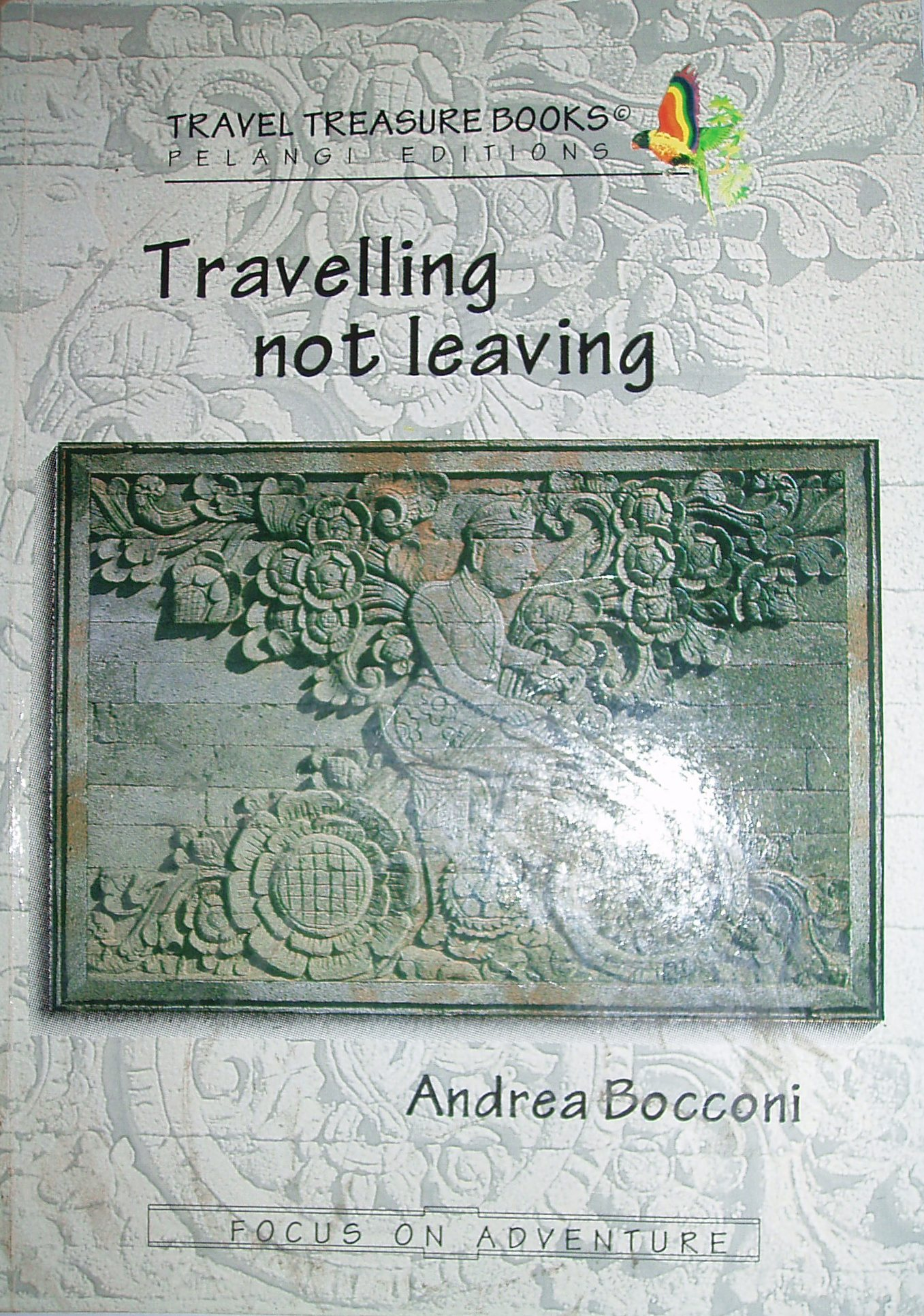 Travelling Not Leavi...