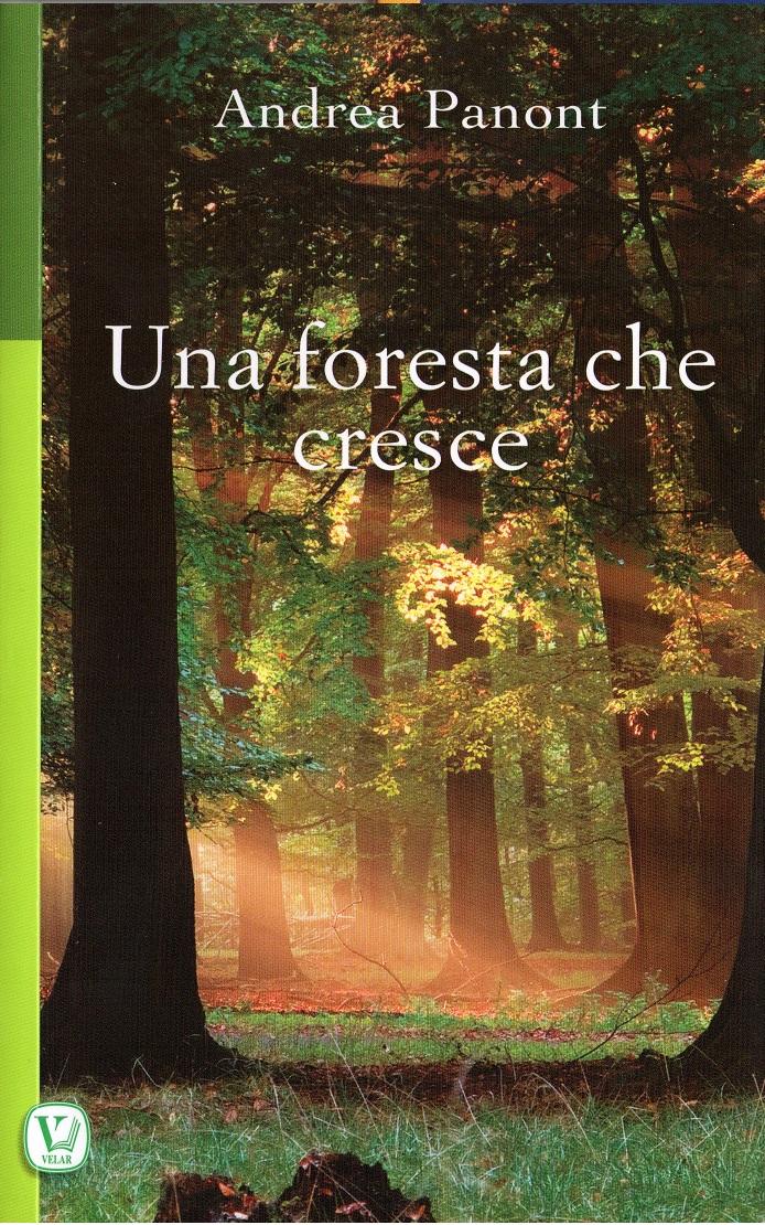 Una foresta che cresce
