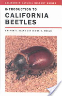 California Beetles
