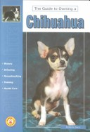 Guide to Owning a Chihuahua