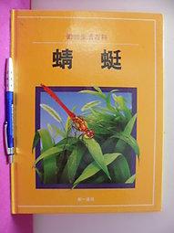 動物生活百科-蜻蜓